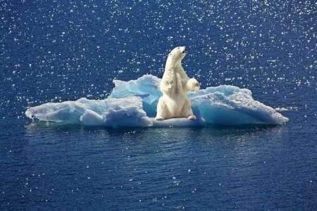 Ohne die USA an Bord wird sich die Erde noch schneller erwärmen