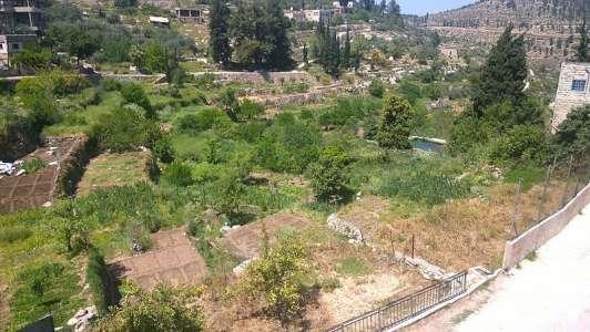 Palästinenser profitieren vom Gesetz, weil es damit viel wahrscheinlicher wird, dass sie Entschädigungen ausgezahlt bekommen