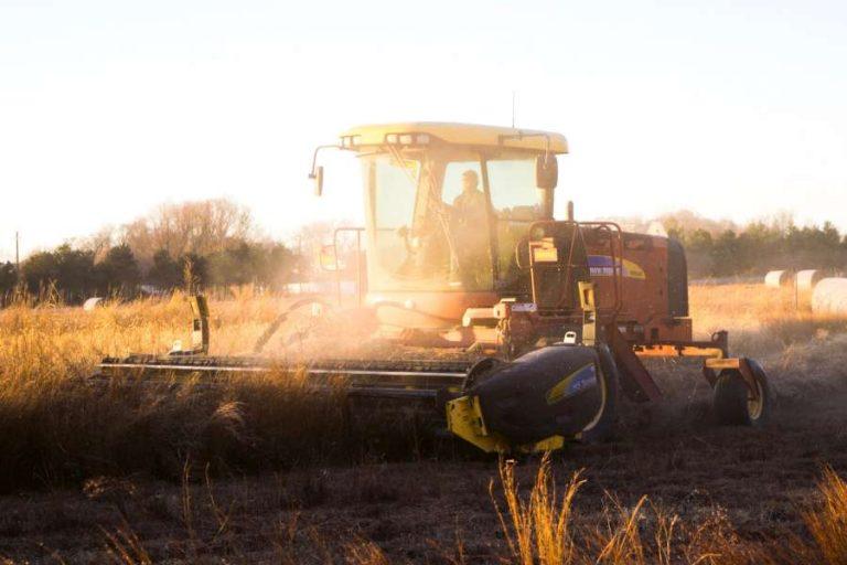 Die industrielle Landwirtschaft zerstört die Umwelt