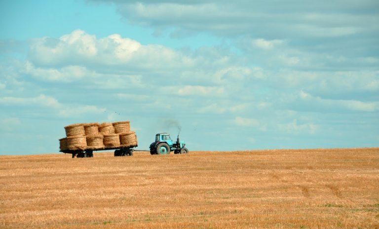 Wir müssen uns von unserem traditionellen Bild der Landwirtschaft verabschieden