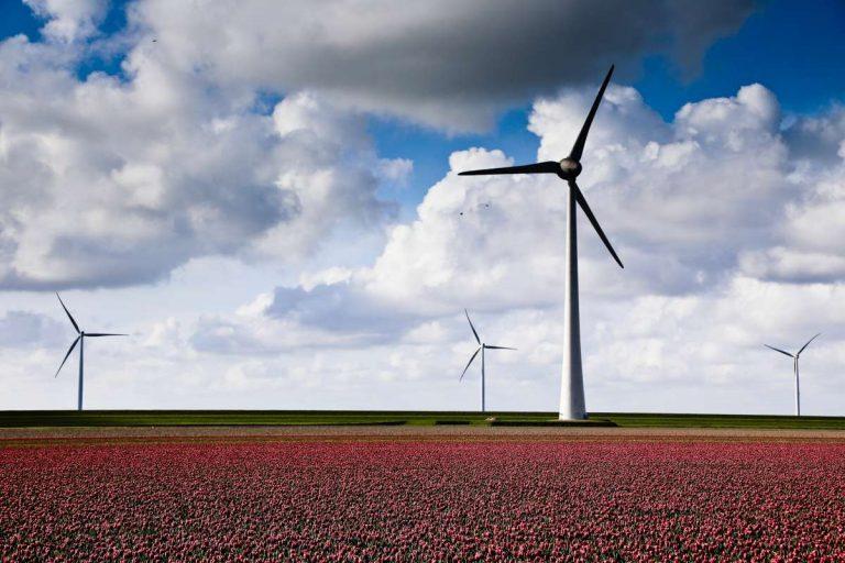 Wir könnten weltweite Pioniere in Umweltpolitik und Digitalisierung werden