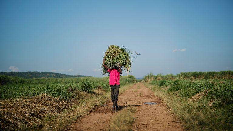 Der Zusammenhang zwischen Flüchtlingskrise und moderner Sklaverei