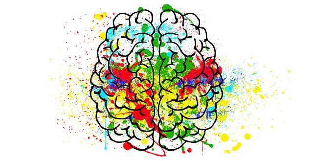 Schon kleine Mengen Alkohol schädigen das Gehirn