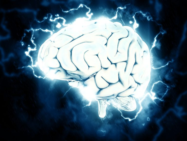 Wie verändern Computerspiele unser Gehirn?