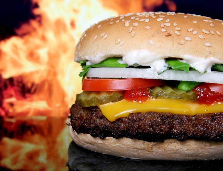 Fleischkonsum und Tierprodukte sind schlecht für unsere Gesundheit