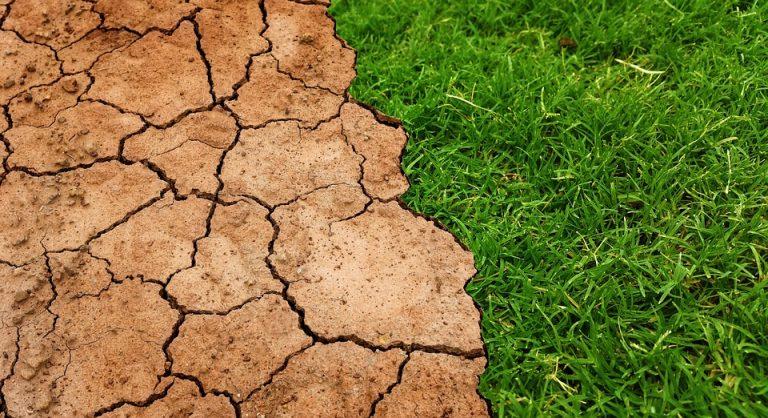 Deutsche Klimapolitik – Zahlen & Fakten im Überblick