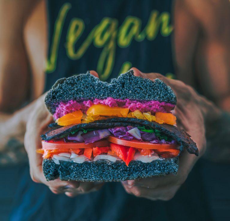Vegan ist keine Lösung