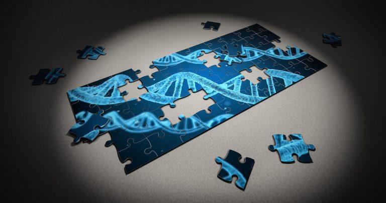 Genmanipulation - die wichtigsten Argumente im Überblick