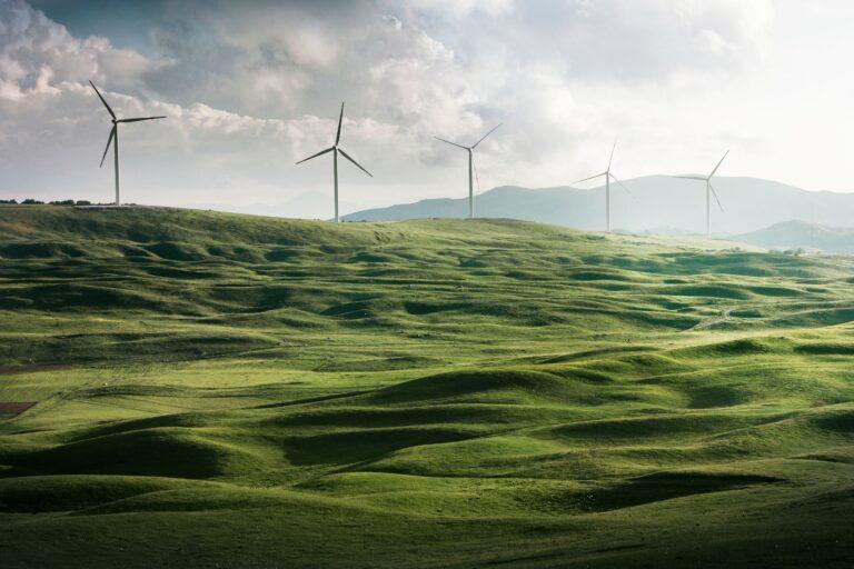 Grünes Wachstum kann das Klima retten