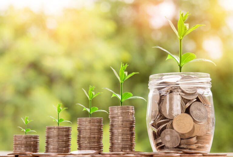Kluge Investoren setzen auf grüne Unternehmen – und werden damit reich