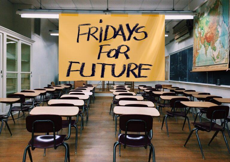 Fridays for Future: Sollten wir alle mitdemonstrieren?